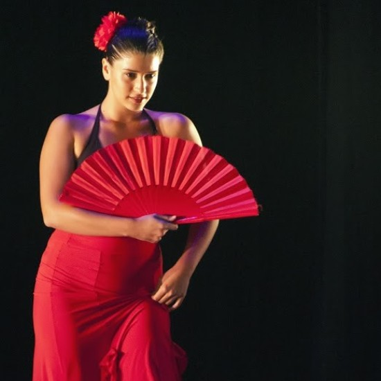 Learn Spanish and Flamenco